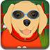 拉布拉多犬的护理