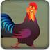 复仇的公鸡3