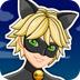 黑猫诺尔装扮