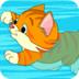 小猫逃脱泳池