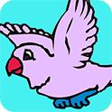鸟类图画册
