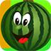 寻找遗失的西瓜